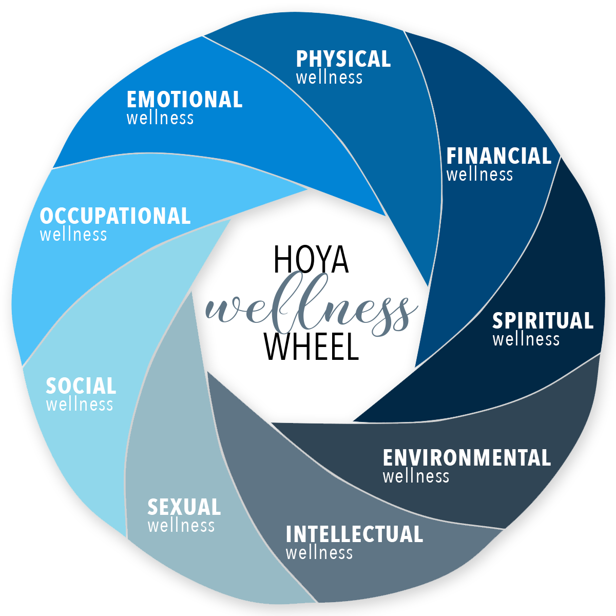 Hoya Wellness Wheel Graphic